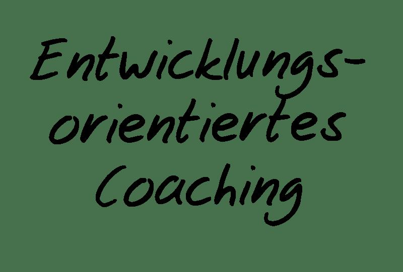 Entwicklungsorientiertes Coaching